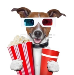 -movie-popcorn-dog-watching-a-film